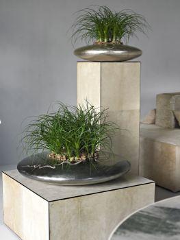 PLANTSCAPE DESIGN SHOW COMES TO SIDNEY